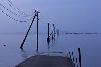 熊本県 住吉海岸公園 満潮と電柱