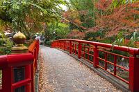 修善寺温泉の紅葉