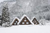 岐阜県 雪の白川郷荻町合掌造り集落