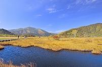 群馬県 尾瀬 中田代の池塘と紅葉の至仏山