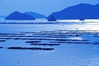 愛媛県 宇和海