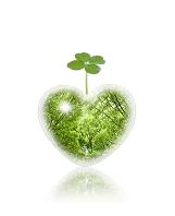 ハート新緑と四葉のクローバー