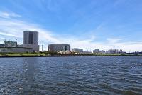 東京都 新豊洲方面のビル群