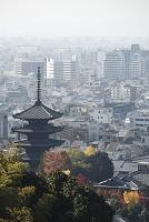 京都市内と五重塔