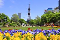 北海道 札幌市 大通公園