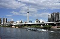 東京都 隅田川の水上バスと東京スカイツリー