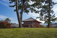 奈良県 興福寺中金堂 秋景