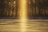 北海道 サンピラー 太陽柱 朝
