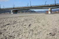 静岡県 渇水(瀬切れ)の安倍川と静岡大橋