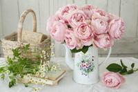 コーヒーポットの飾ったピンクバラ