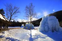 山梨県 西湖野鳥の森公園 樹氷まつり