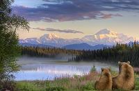 アメリカ デナリ国立公園 マッキンリー山