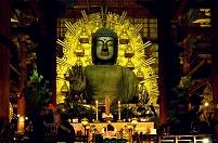 奈良県  東大寺 夜景