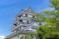 徳島県 川島城 模擬天守