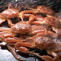 ズワイ蟹と水しぶき