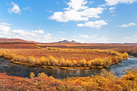 紅葉真っ盛りのトゥームストーン準州立公園