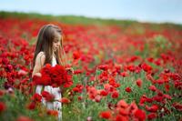 女の子と赤いポピー