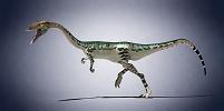 CG 恐竜