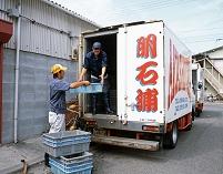 明石浦漁港 保冷車に積み込む 兵庫県 明石市