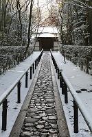 京都府 雪の大徳寺高桐院参道