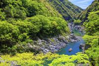 徳島県 新緑の大歩危峡と観光遊覧船 吉野川