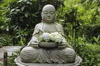 神奈川県 鎌倉 明月院の花想い地蔵
