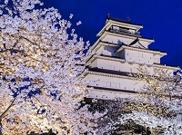 福島県 鶴ヶ城と夜桜