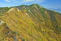 長野県 岩小屋沢岳の稜線から爺ケ岳