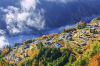 長野県 雲海漂う紅葉の下栗の里朝景