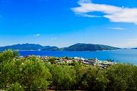 香川県 小豆島オリーブ園 オリーブ畑と海