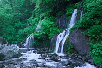 朝もやの吐龍の滝