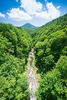 福島県 磐梯高原