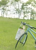 草原と自転車にかけたエコバック