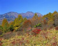 山梨県 美し森と権現岳
