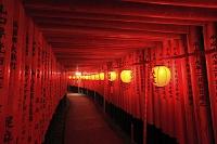 京都府 伏見稲荷大社 宵宮祭の献納提灯と千本鳥居
