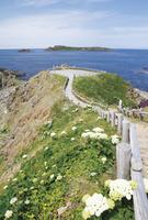 北海道 スコトン岬とトド島