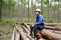 間伐作業で休憩中の林業の日本人男性