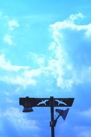 カモメの外灯と雲