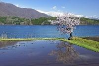 長野県 青木湖