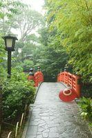 静岡県 霧雨に煙るかえで橋