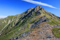 山梨県 北岳山荘付近より草紅葉と北岳 南アルプス