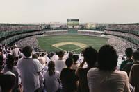 野球の観戦