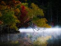 北海道 阿寒の紅葉