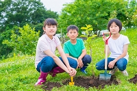 果物の苗木を植える日本人の子供たち