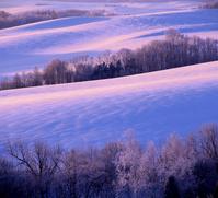 凍て付いた早朝に染まる, 丘