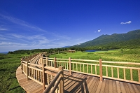北海道 知床 一湖と高架木道