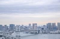 東京都 江東区 レインボーブリッジと東京湾とビル群