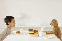 おやつを食べる男の子と犬