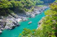 徳島県 新緑の大歩危