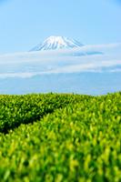 静岡県 富士市神戸から見た富士山